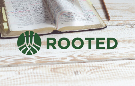 Rooted Celebration
